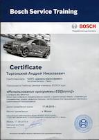 использование программы esi tronic сертификат 05