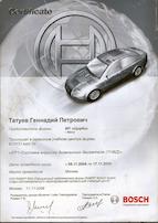 Система впрыска дизельного двигателя (ТНВД)